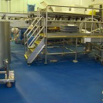 Blue USDA Floor for Food Processing Plant